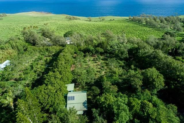 55-186 Hoea Rd, Hawi, HI 96719 (MLS #655087) :: LUVA Real Estate