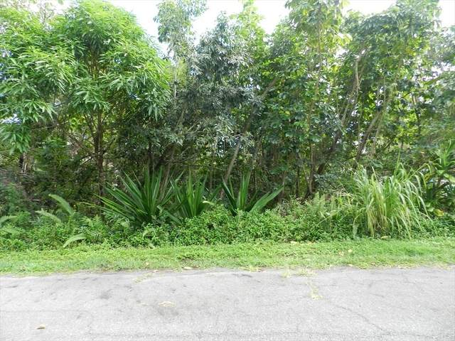 Akanikolea St, Pahoa, HI 96778 (MLS #655120) :: Corcoran Pacific Properties