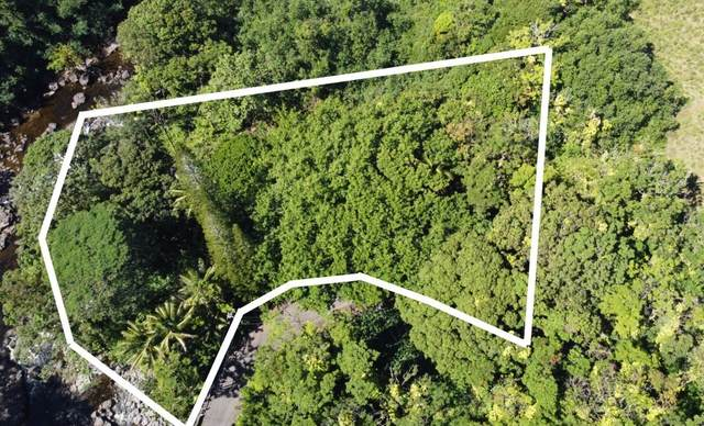 31-345 Old Mamalahoa Hwy, Ninole, HI 96773 (MLS #655240) :: LUVA Real Estate