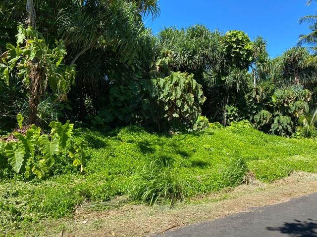 Address Not Published, Pahoa, HI 96778 (MLS #655310) :: Aloha Kona Realty, Inc.