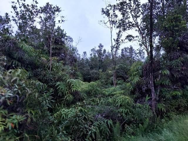 16-1671 Uhini Ana Rd (Road 1), Mountain View, HI 96771 (MLS #655321) :: Aloha Kona Realty, Inc.