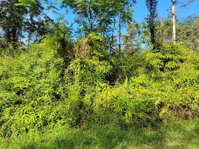 Ginger Pl, Pahoa, HI 96778 (MLS #655354) :: Aloha Kona Realty, Inc.