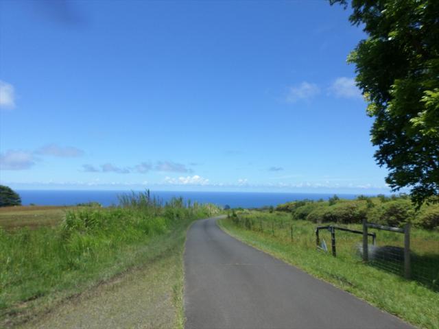 Kamee Homestead Rd, Ninole, HI 96773 (MLS #299103) :: Elite Pacific Properties