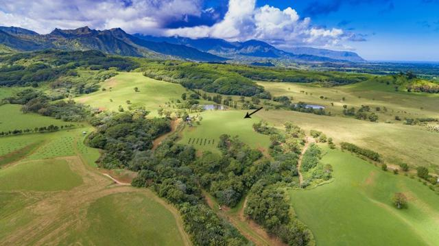 Kapuna Road, Kilauea, HI 96754 (MLS #602932) :: Kauai Exclusive Realty