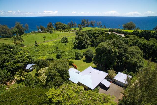 28-3055 Beach Rd, Pepeekeo, HI 96783 (MLS #609231) :: Elite Pacific Properties