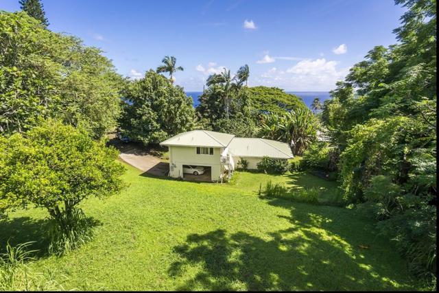 36-2289 Hawaii Belt Rd, Laupahoehoe, HI 96764 (MLS #609285) :: Aloha Kona Realty, Inc.