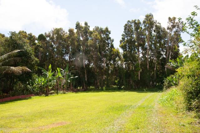 Address Not Published, Honokaa, HI 96727 (MLS #609515) :: Elite Pacific Properties