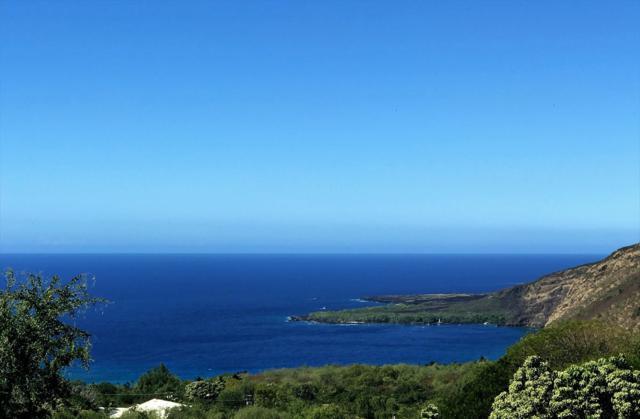 83-1027 Kamuku Pl, Captain Cook, HI 96704 (MLS #610222) :: Aloha Kona Realty, Inc.