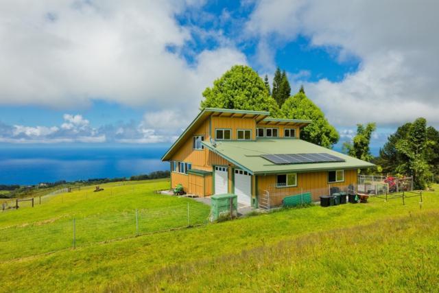35-1183 Homestead Rd, Laupahoehoe, HI 96764 (MLS #610399) :: Elite Pacific Properties