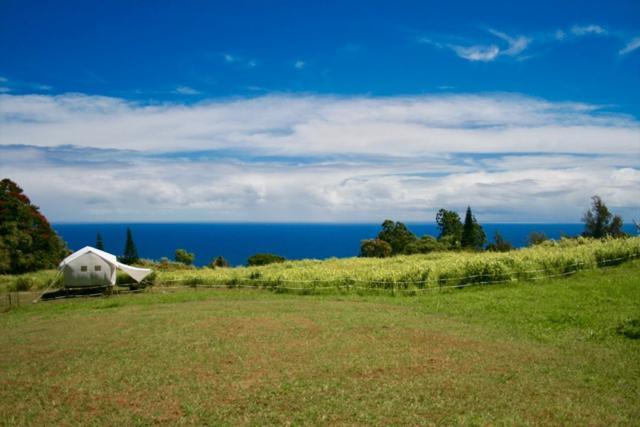 36-1124 Stevens Road, Ookala, HI 96774 (MLS #610521) :: Aloha Kona Realty, Inc.