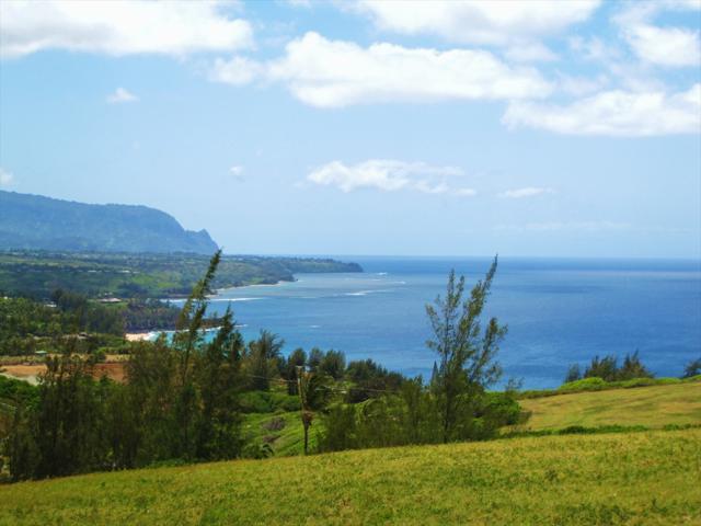 Makana'ano Pl, Kilauea, HI 96754 (MLS #611324) :: Aloha Kona Realty, Inc.