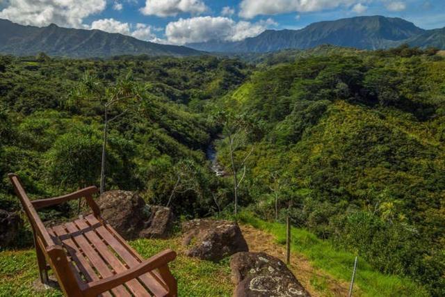 5400-C Kahiliholo Rd, Kilauea, HI 96754 (MLS #611337) :: Aloha Kona Realty, Inc.