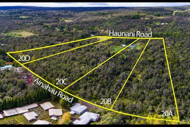 19-4290 Haunani Road, Volcano, HI 96785 (MLS #611650) :: Aloha Kona Realty, Inc.