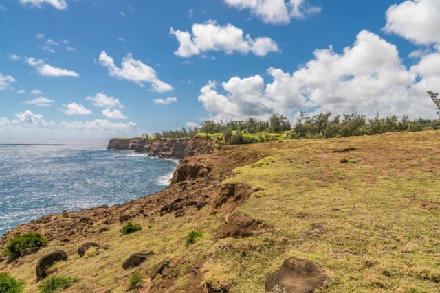 55-199 Hoea Rd, Hawi, HI 96719 (MLS #612315) :: Elite Pacific Properties