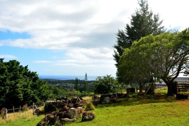 Address Not Published, Lawai, HI 96765 (MLS #614277) :: Elite Pacific Properties