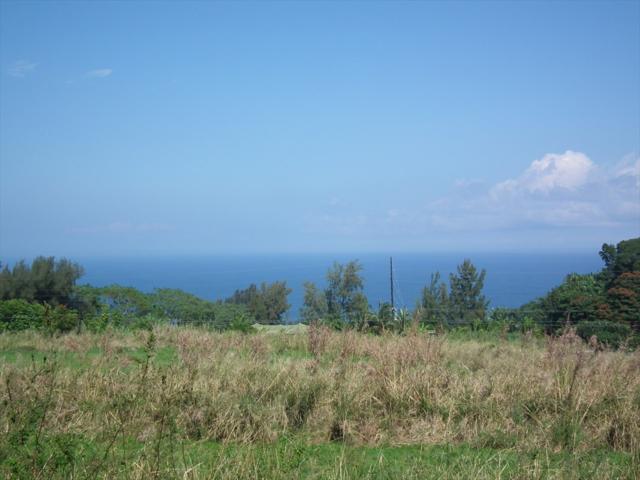 Address Not Published, Papaaloa, HI 96780 (MLS #614673) :: Elite Pacific Properties