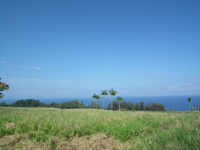 Address Not Published, Papaaloa, HI 96780 (MLS #614675) :: Elite Pacific Properties