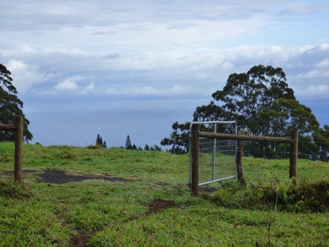 44-3099 Kula Kahiko Rd, Paauilo, HI 96776 (MLS #615016) :: Aloha Kona Realty, Inc.