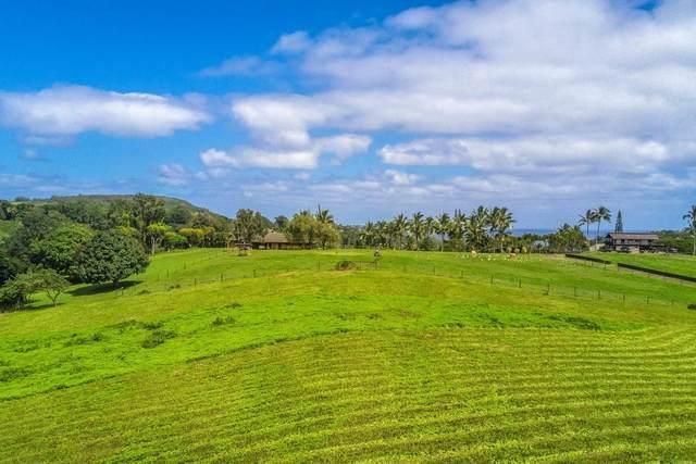 1980 Kolo Rd, Kilauea, HI 96754 (MLS #615092) :: Steven Moody