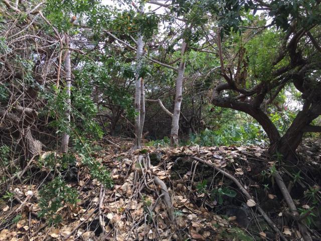 Datura Rd, Captain Cook, HI 96704 (MLS #615299) :: Elite Pacific Properties