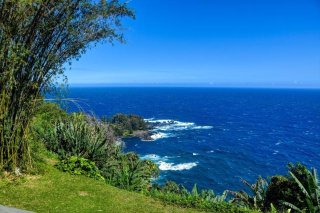 36-2370 Pualaea Pl, Hamakua, HI 96764 (MLS #615499) :: Aloha Kona Realty, Inc.