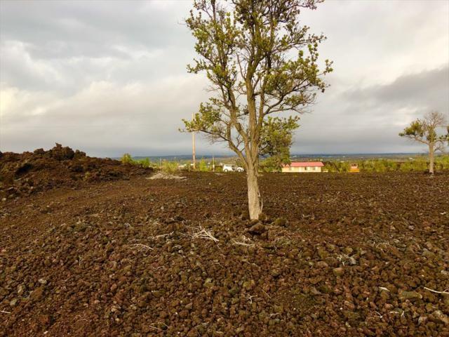 Bougainvillaea Dr, Ocean View, HI 96737 (MLS #615534) :: Elite Pacific Properties