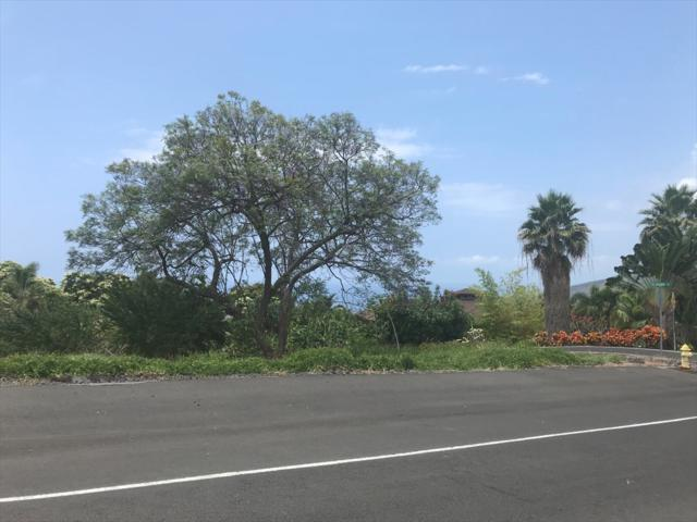 83-1018-K Address Not Published, Captain Cook, HI 96704 (MLS #616177) :: Aloha Kona Realty, Inc.