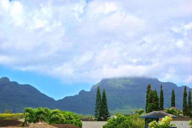 3980 Hunakai St, Lihue, HI 96766 (MLS #616475) :: Kauai Real Estate Group