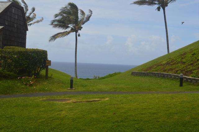 3700 Kamehameha Rd, Princeville, HI 96722 (MLS #617002) :: Elite Pacific Properties