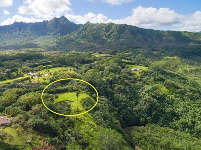 6213 Kahiliholo Rd, Kilauea, HI 96754 (MLS #617042) :: Kauai Real Estate Group