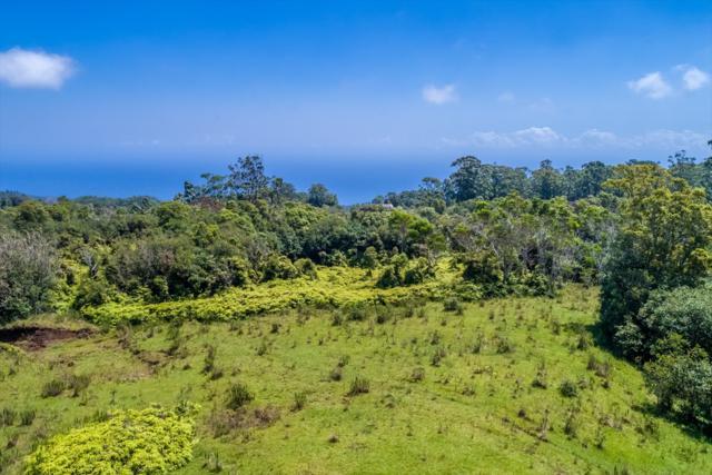 Address Not Published, Laupahoehoe, HI 96764 (MLS #617355) :: Aloha Kona Realty, Inc.