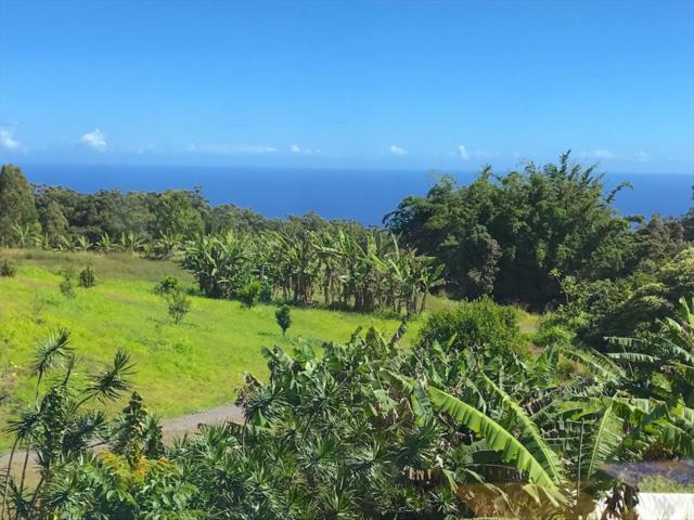 Address Not Published, Honokaa, HI 96727 (MLS #617366) :: Aloha Kona Realty, Inc.