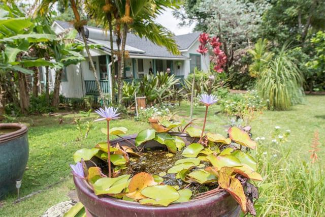 5531 Wailaau Rd, Koloa, HI 96756 (MLS #617545) :: Elite Pacific Properties