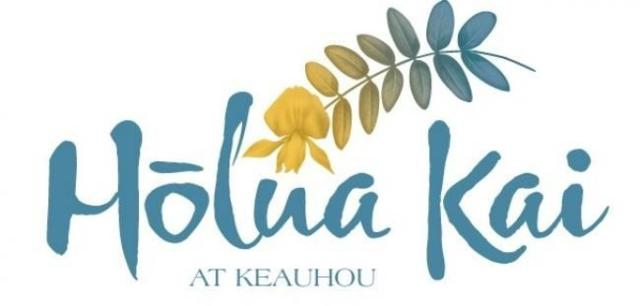 78-7072 Holuaki Loop, Kailua-Kona, HI 96740 (MLS #617650) :: Aloha Kona Realty, Inc.