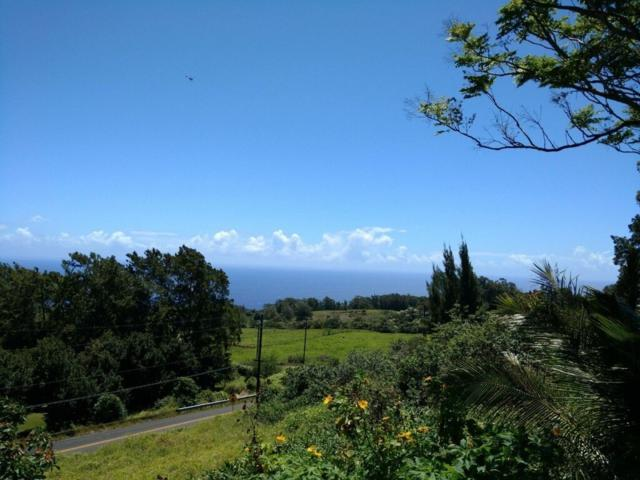 44-2585 Kalaniai Rd, Honokaa, HI 96727 (MLS #617822) :: Elite Pacific Properties