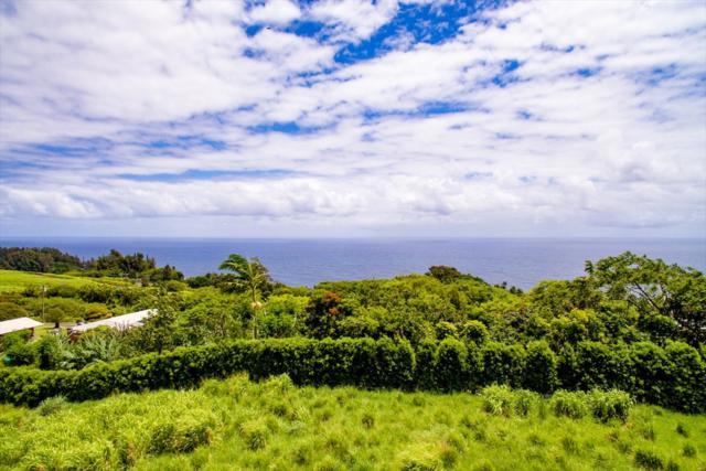 36-3331 Kuwili Lani Place, Laupahoehoe, HI 96764 (MLS #618351) :: Oceanfront Sotheby's International Realty