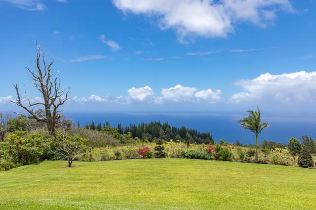 35-580 Kihalani Homestead Rd, Laupahoehoe, HI 96764 (MLS #618360) :: Elite Pacific Properties