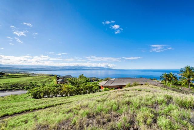 59-181 Hokulele Dr, Kapaau, HI 96755 (MLS #618474) :: Elite Pacific Properties