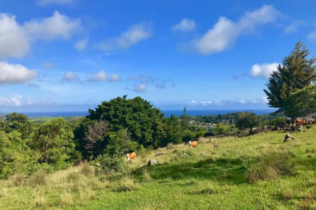 Akemama Rd, Kalaheo, HI 96741 (MLS #618491) :: Elite Pacific Properties