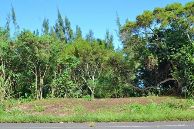 Address Not Published, Hawi, HI 96719 (MLS #618710) :: Aloha Kona Realty, Inc.