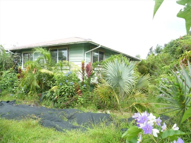18-1259 Volcano Rd, Mountain View, HI 96771 (MLS #619508) :: Aloha Kona Realty, Inc.