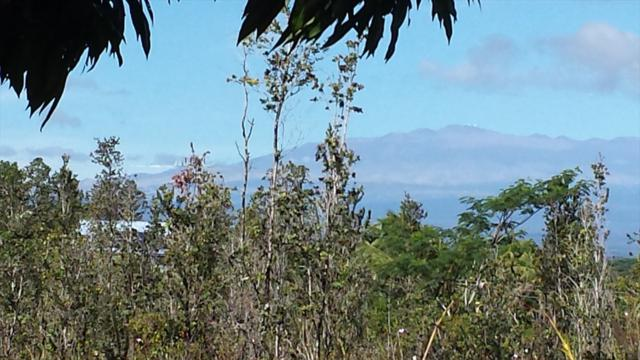 17TH AVE, Keaau, HI 96749 (MLS #619650) :: Aloha Kona Realty, Inc.