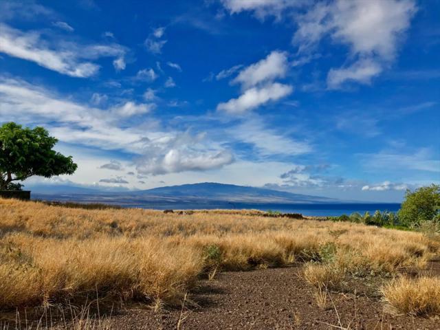 59-119 Kihi Kihi Pl, Kamuela, HI 96743 (MLS #620437) :: Aloha Kona Realty, Inc.