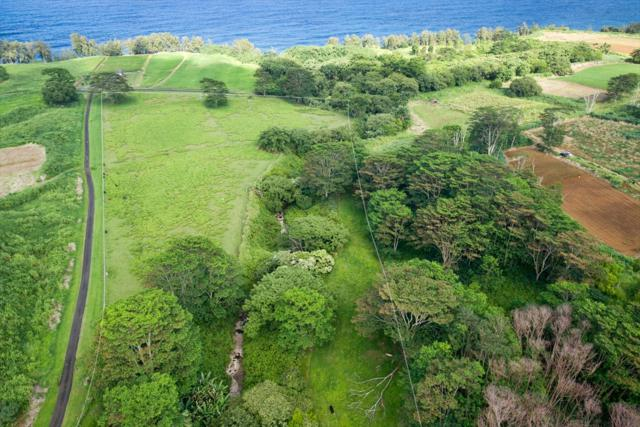 28-1110 Old Railroad Way, Pepeekeo, HI 96783 (MLS #620909) :: Steven Moody