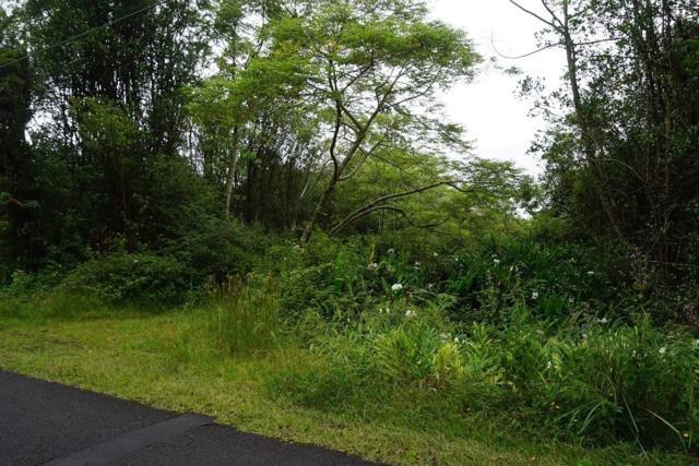 Ihope Road, Mountain View, HI 96771 (MLS #621371) :: Aloha Kona Realty, Inc.