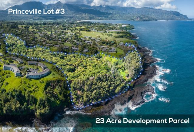Kaui Rd, Princeville, HI 96722 (MLS #621436) :: Elite Pacific Properties