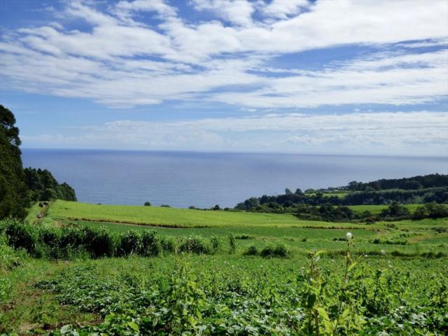 34-4314 Pali Nana Rd, Papaaloa, HI 96780 (MLS #621465) :: Oceanfront Sotheby's International Realty