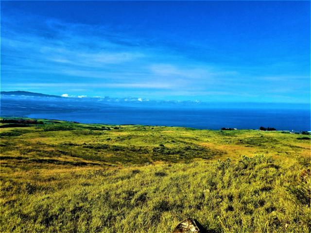 Kohala Ranch Rd, Kamuela, HI 96743 (MLS #621501) :: Aloha Kona Realty, Inc.