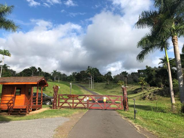 Address Not Published, Kealakekua, HI 96750 (MLS #621570) :: Song Real Estate Team/Keller Williams Realty Kauai