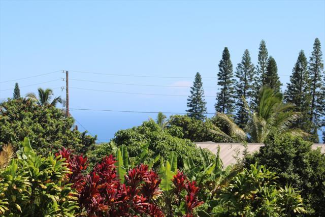 Kamaoa Road, Naalehu, HI 96772 (MLS #621819) :: Aloha Kona Realty, Inc.